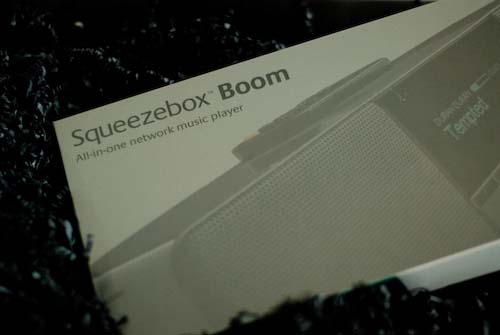 Squeezebox Boom - Logitech